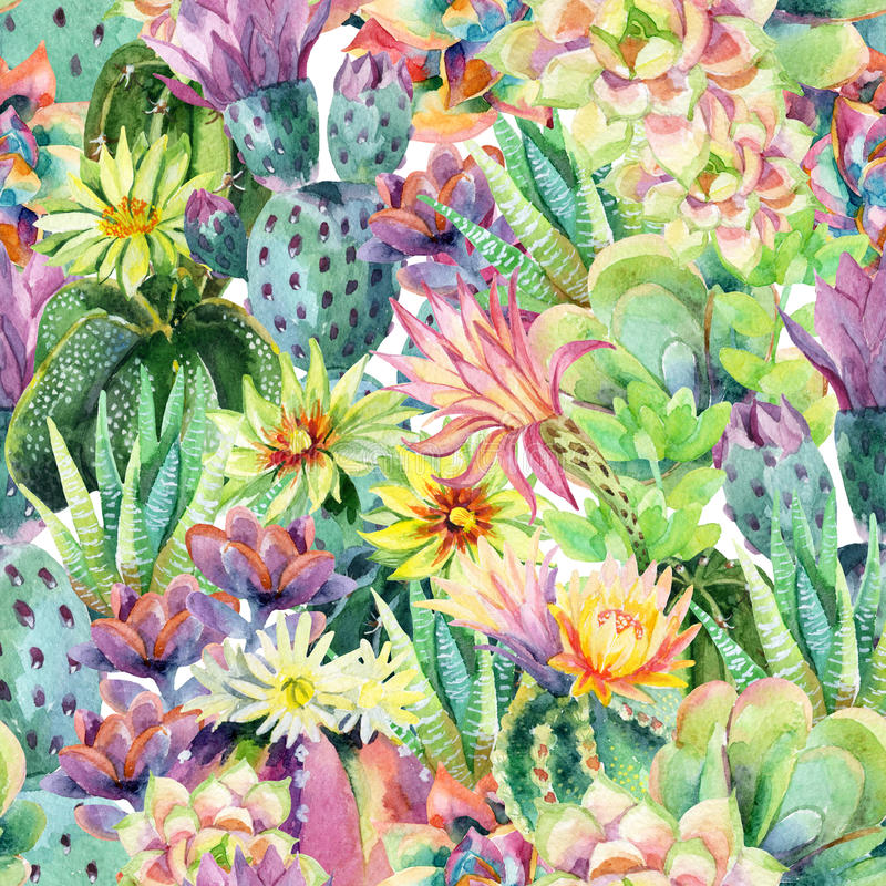 Watercolor blooming cactus background. Exotic cacti with flowers seamless pattern. Succulent plants and cactus garden pattern. Hand painted watercolor