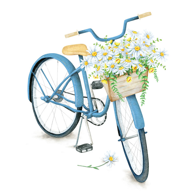 Watercolor blue bicycle with beautiful flower basket royalty free illustration