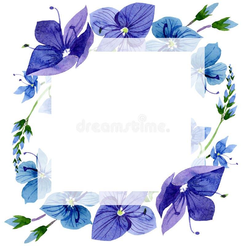 Watercolor blue Veronica flower. Floral botanical flower. Frame border ornament square. Aquarelle wildflower for background, texture, wrapper pattern, frame or royalty free illustration
