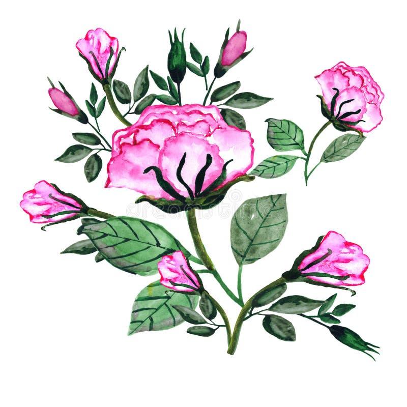 watercolor Blumenstrauß von Rosen und von Knospen Einladungskarte für die Heirat, Geburtstag und andere Feiertage Sch?ner Fr?hlin lizenzfreie abbildung