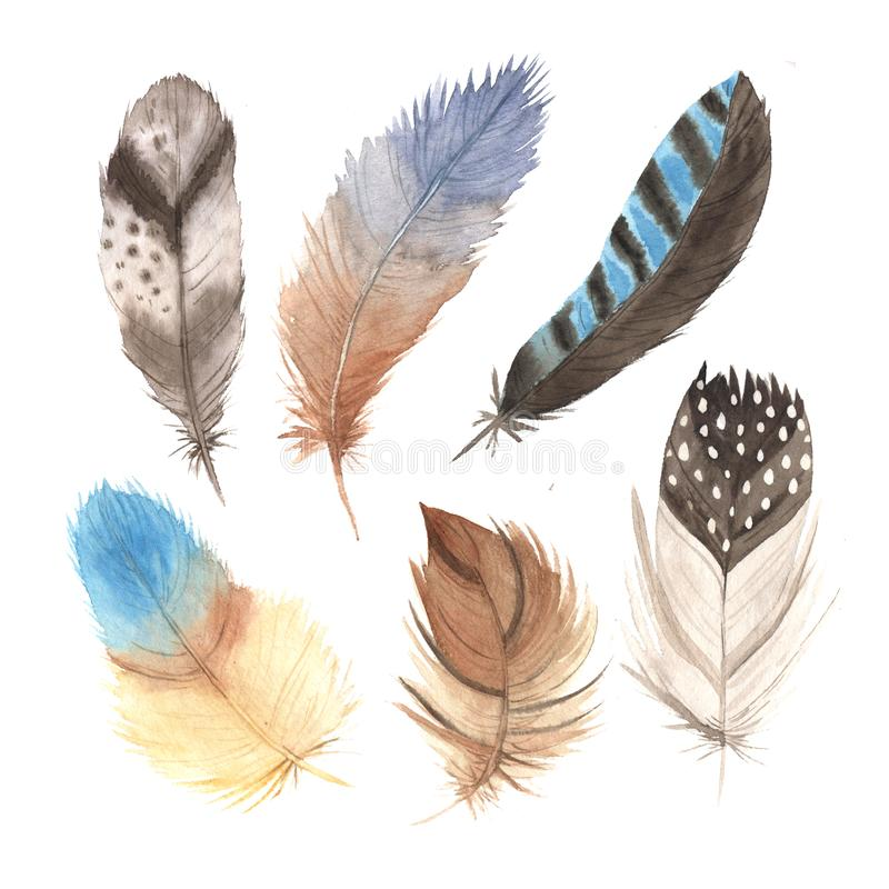 Watercolor boho colorful feathers collection stock illustration