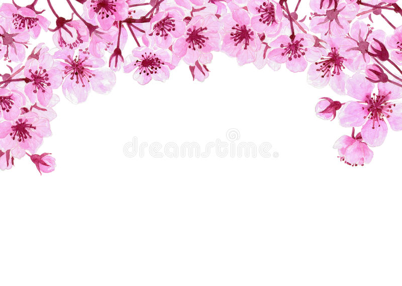 Watercolor Border With Cherry Blossoms Stock Illustration ...