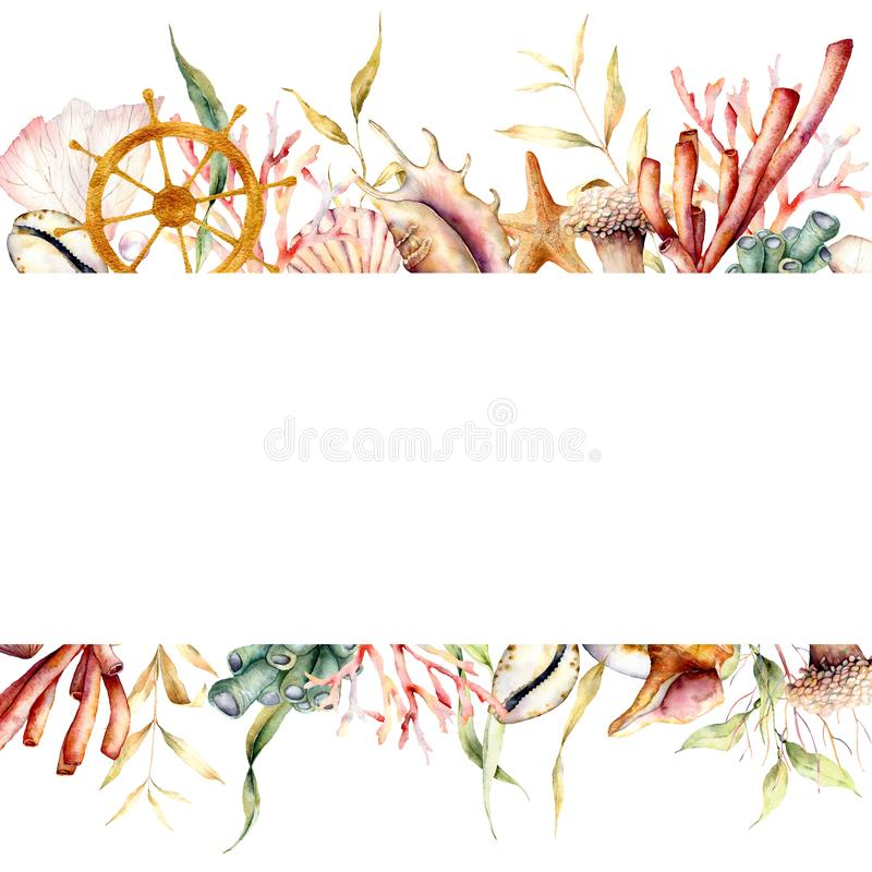 Free Watercolor Border With Coral Reef Plants And Ships Wheel. Hand Painted Seaweeds, Shells And Starfish Isolated On White Royalty Free Stock Photo - 151816745