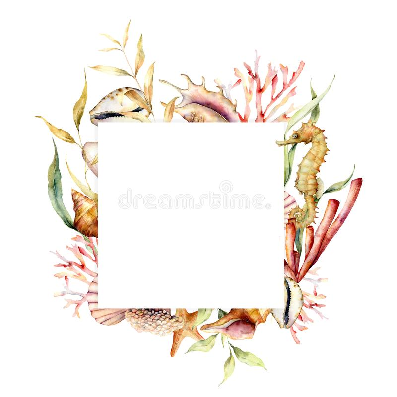 Free Watercolor Border With Seahorse And Coral Reef Plants. Hand Painted Seaweeds, Shells And Starfish Isolated On White Stock Photo - 151817000