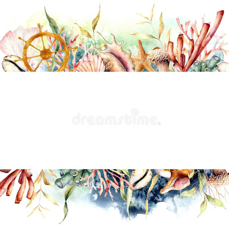 Free Watercolor Border With Ships Wheel And Coral Reef Plants. Hand Painted Seaweeds, Shells And Starfish Isolated On White Stock Photo - 151816780