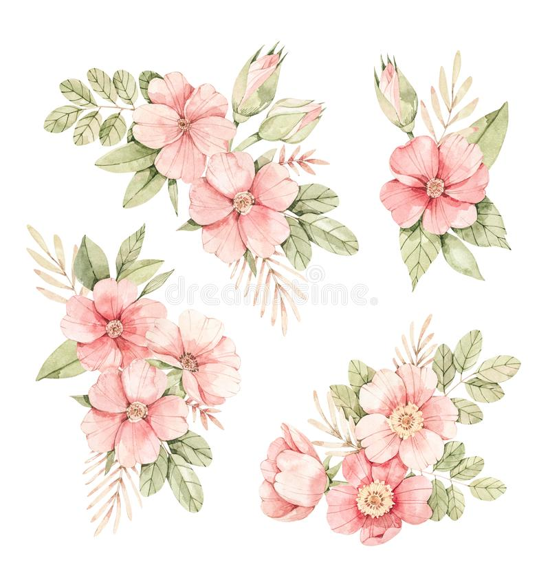 Watercolor botanical illustration. Bouquets with Pink dog-rose blossom Gentle rose, bud, branches and green leaves. Perfect for. Wedding invitations, cards vector illustration