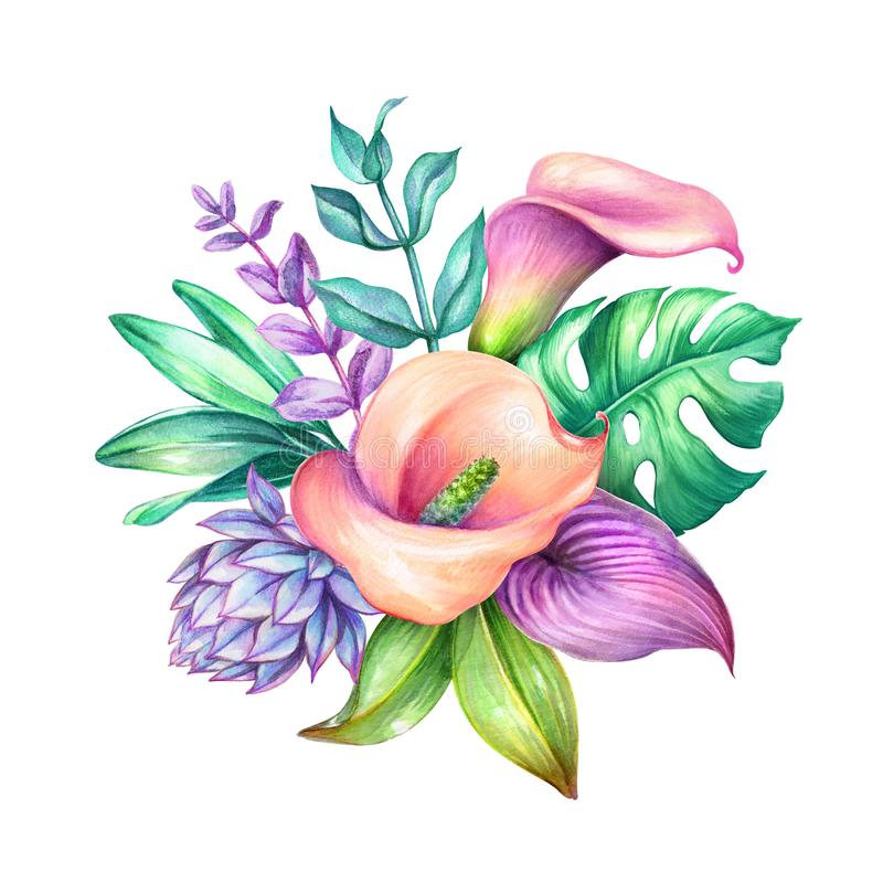 Watercolor botanical illustration, wild tropical flowers, jungle green leaves, calla lily, floral bouquet isolated on white royalty free illustration