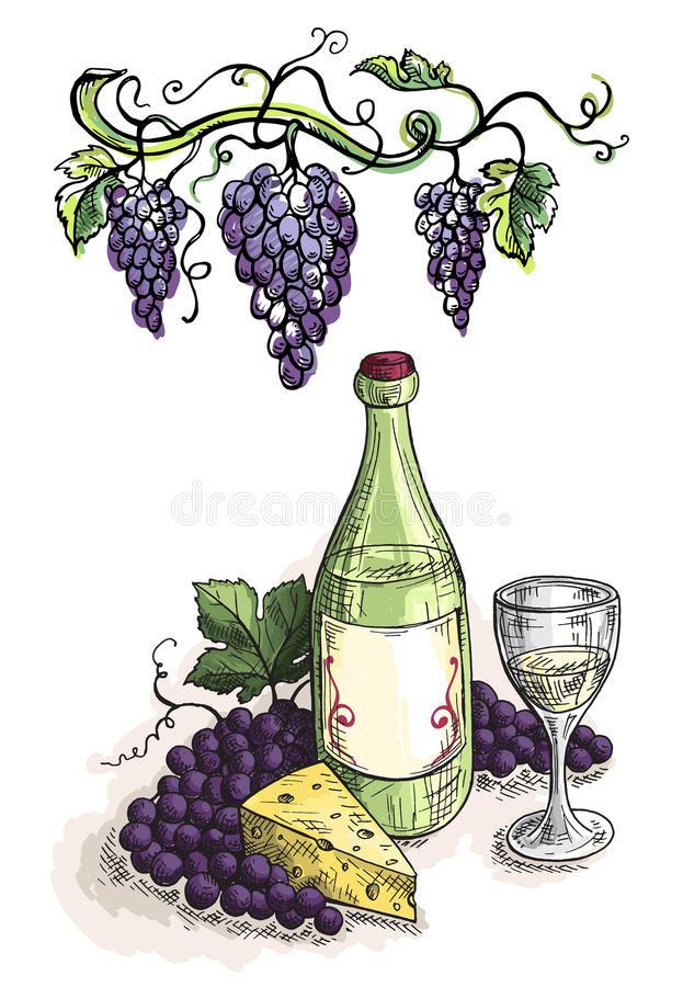 Watercolor bottle glass of wine, grapes and cheese vector illustration