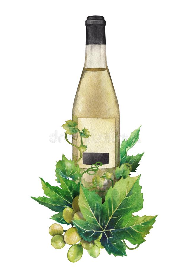 Watercolor bottle of white wine decorated with grape leaves and berries royalty free illustration