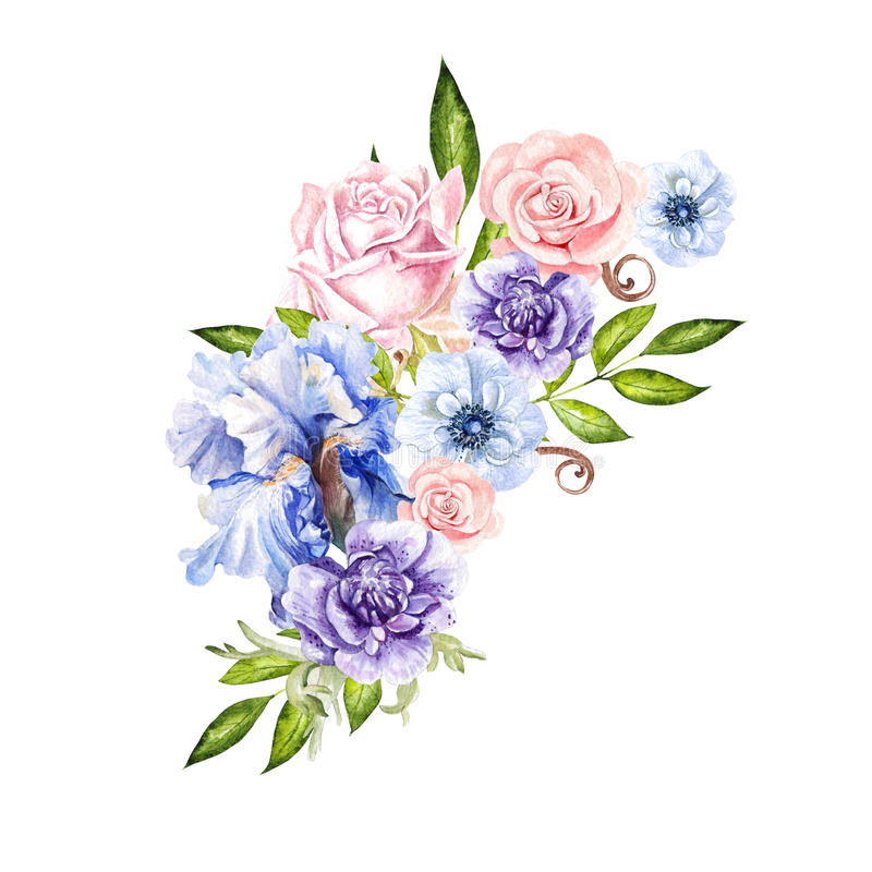 Watercolor bouquet with anemone, iris and berry. vector illustration