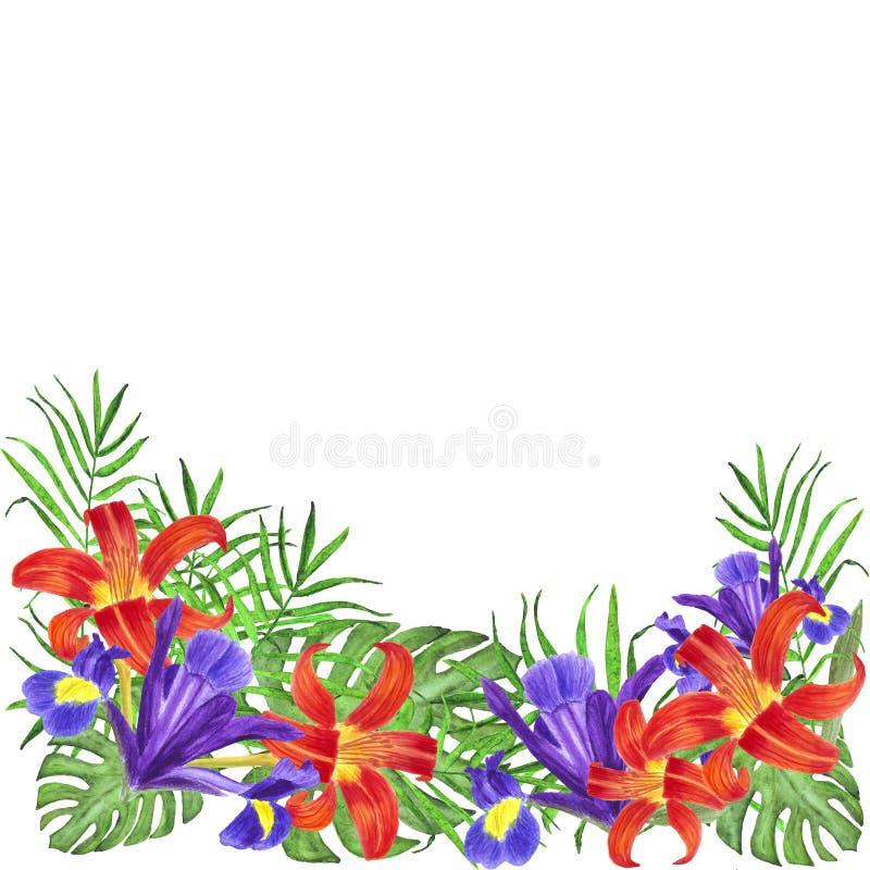 Watercolor bouquet flowers irises lilies palm leaves monstera stock illustration
