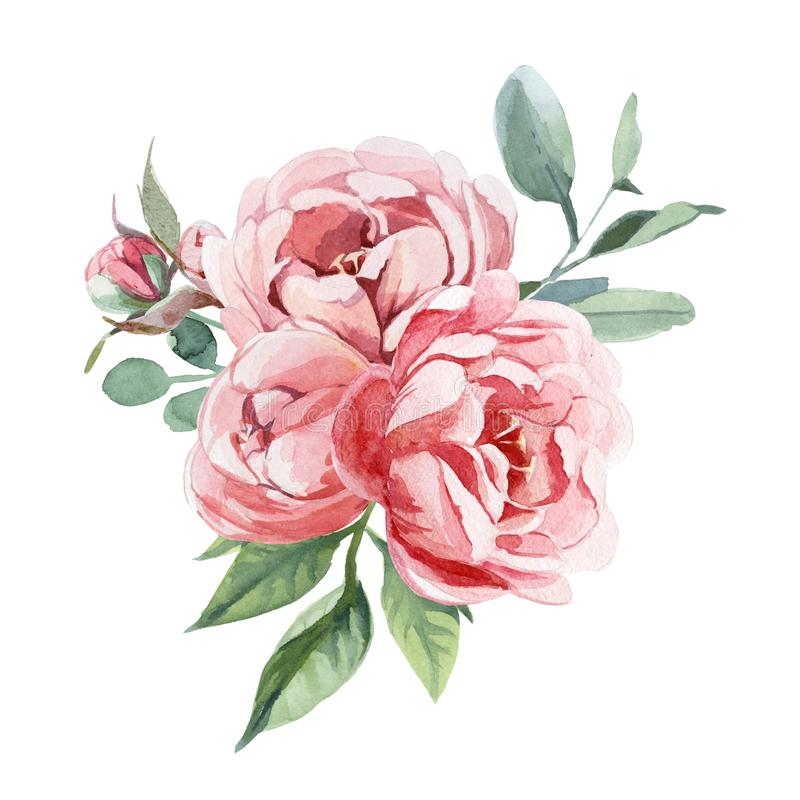 Watercolor bouquet of peony and blosom flowers isolate in white background for wedding, invitation, valentine cards and prints. Watercolor illustration of light vector illustration