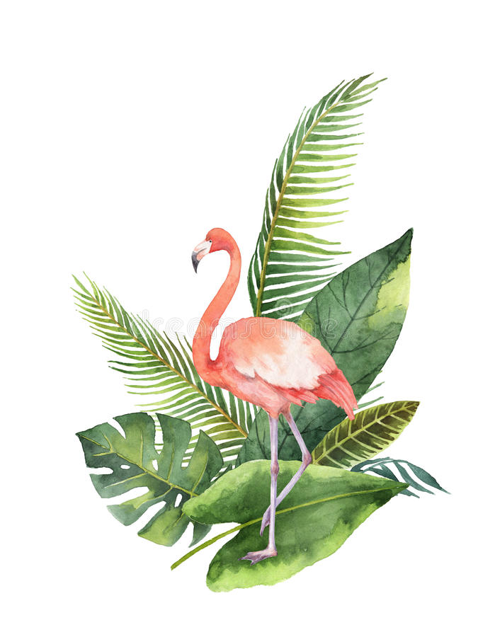 Watercolor bouquet of tropical leaves and the pink Flamingo isolated on white background. stock illustration