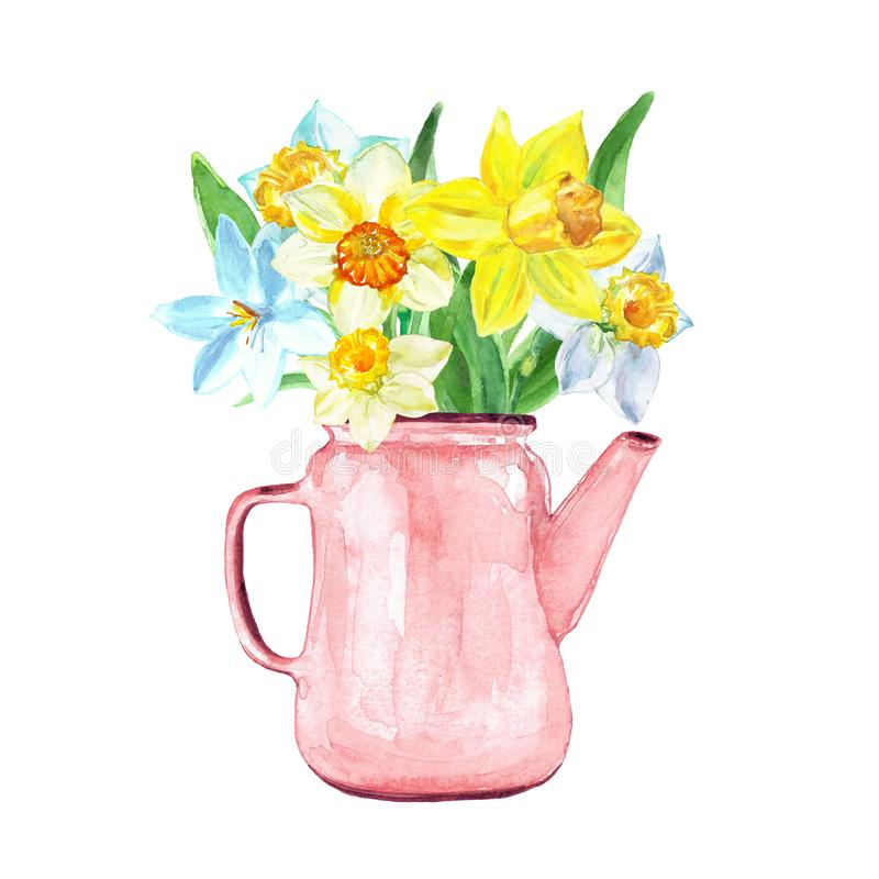 Watercolor bouquet with yellow narcissus in a vintage floral pot, isolated on white background. Spring botnical illustration royalty free stock photo