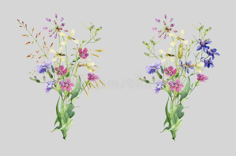 Watercolor bouquets of wild flowers carnations and herbs vector illustration