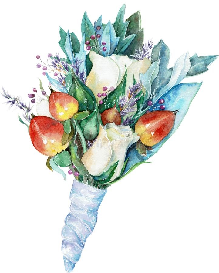 Watercolor boutonniere for the groom of white roses and red berries with blue leaves and ribbon royalty free illustration