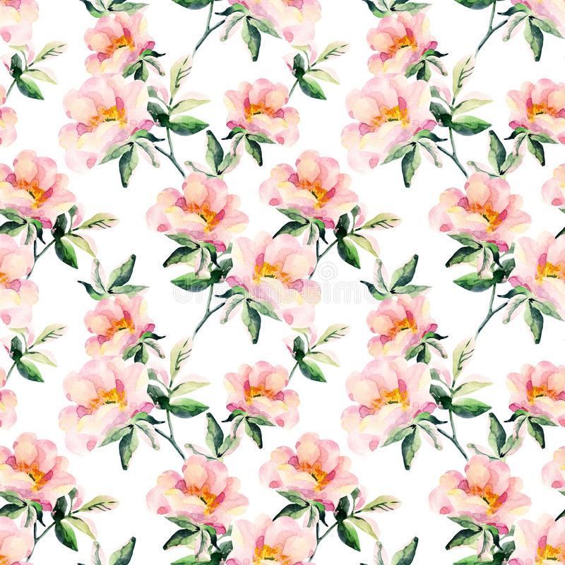 Watercolor briar flowers seamless pattern. Dog Rose branches stock illustration
