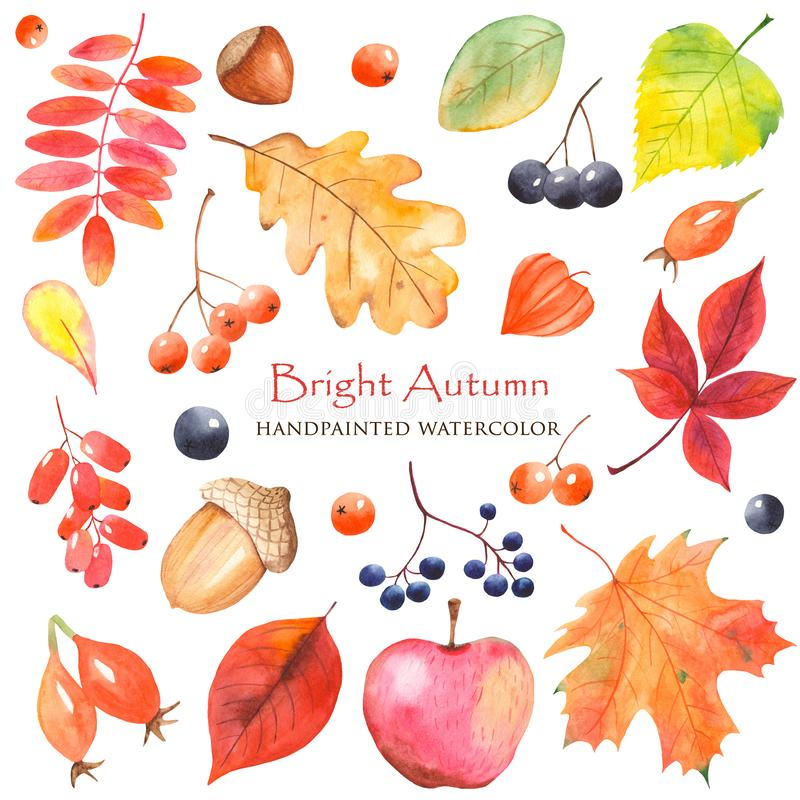Watercolor Bright Autumn with colorful leaves. royalty free illustration