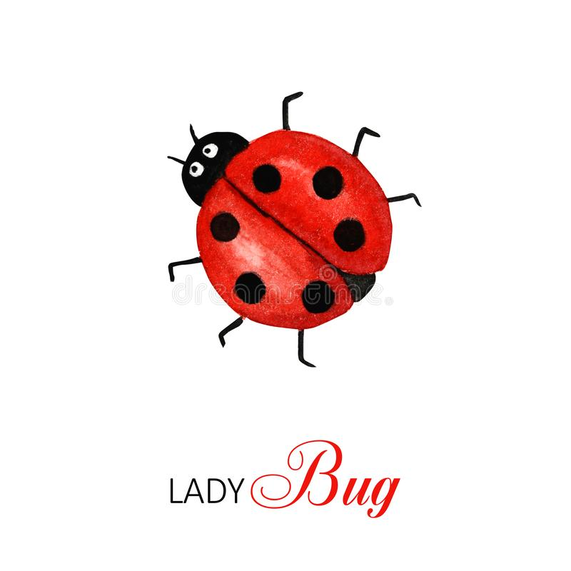 Funny watercolor ladybug, bright cartoon insects. Greeting card with text. Isolated on white background vector illustration