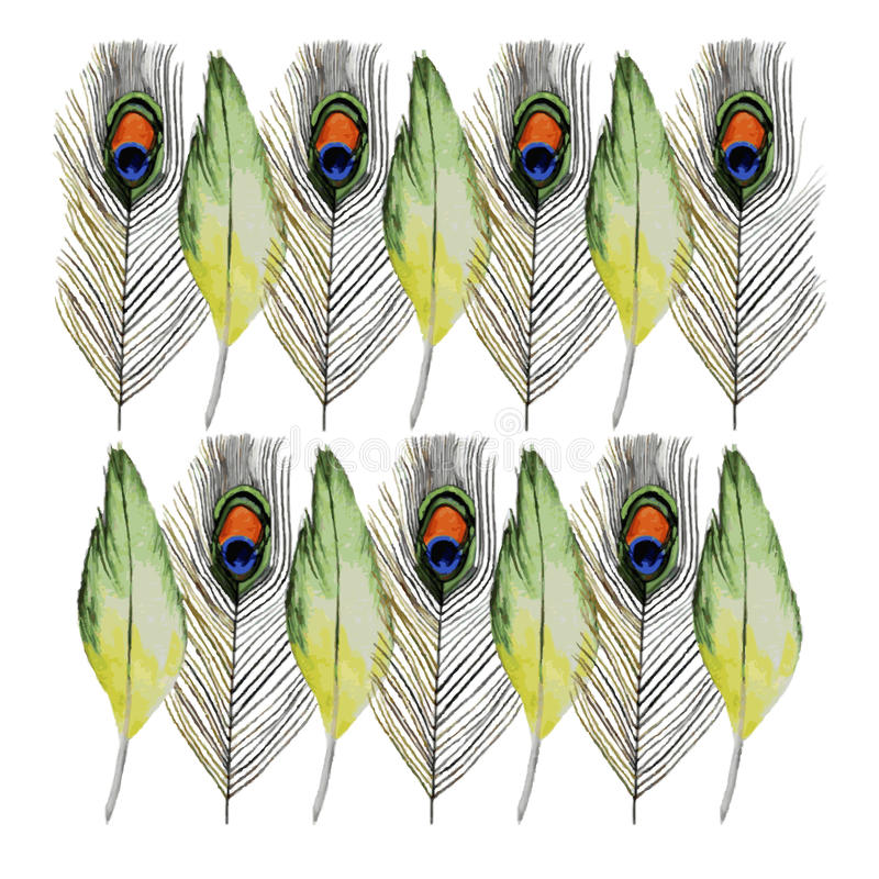 Watercolor Bright feathers. stock illustration