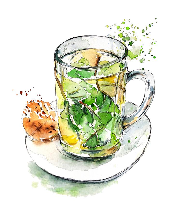 Watercolor bright sketch of Mint Tea in a glass mug with a stroopwafel. Hand painted element isolated on white. Amsterdam collection royalty free illustration