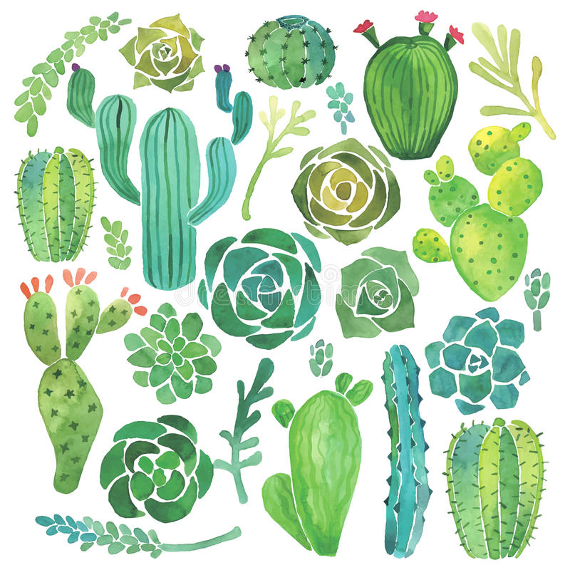 Free Watercolor Cactus And Succulent Set Stock Images - 55603124