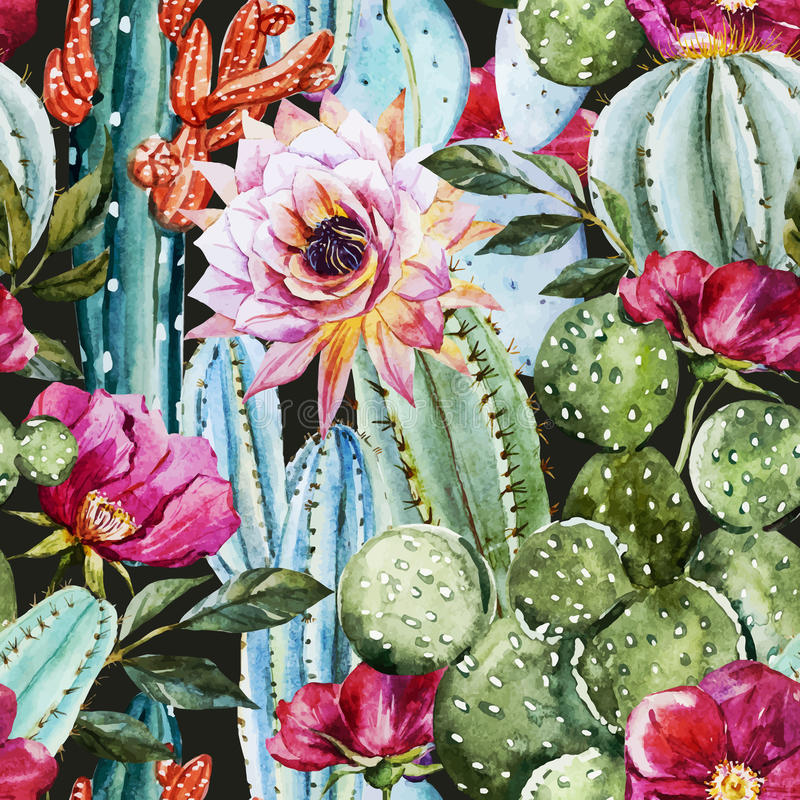 Watercolor cactus pattern stock illustration