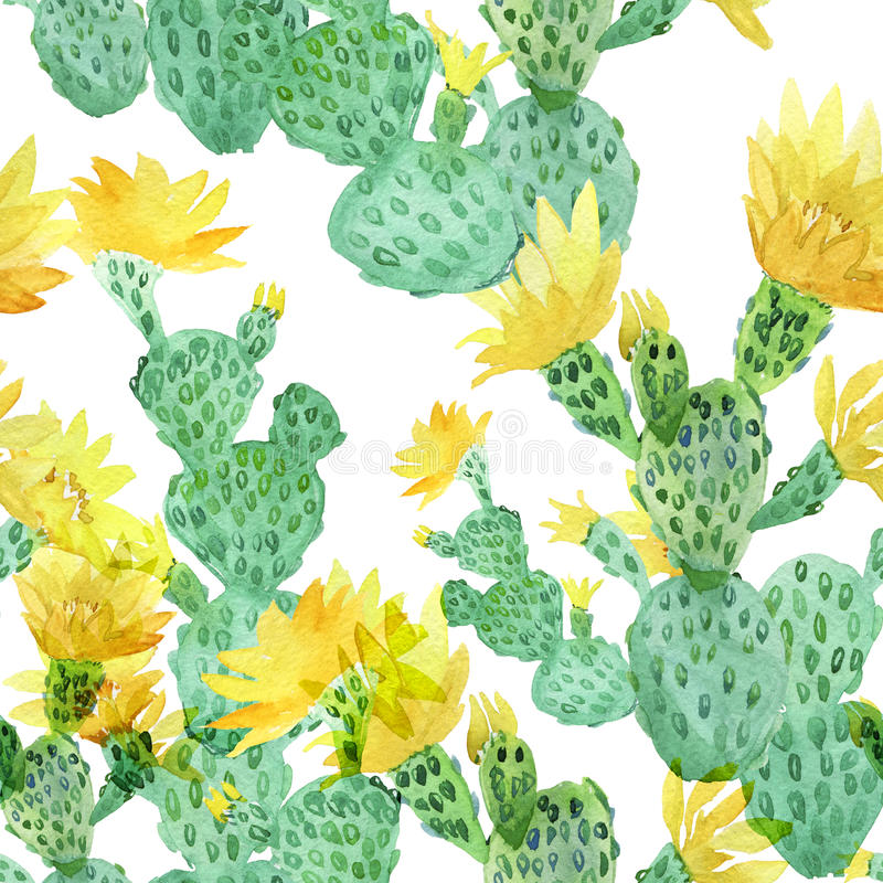 Watercolor cactus, tropical flowers, seamless floral pattern background. stock illustration