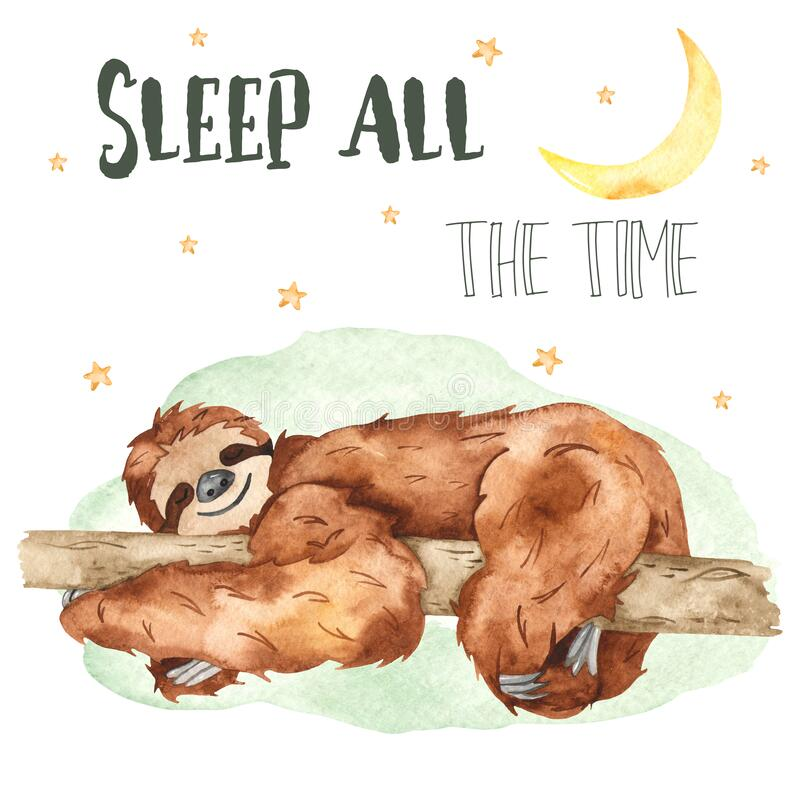Watercolor card with cute sloth sleeping on a tree and stars. Cute sloth sleeping on a tree and stars. Watercolor card stock illustration