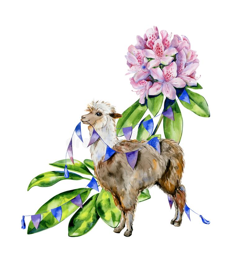 Watercolor cartoon illustration of cute alpaca with pink rhododendron flowers, azalea, schefflera leaves stock illustration
