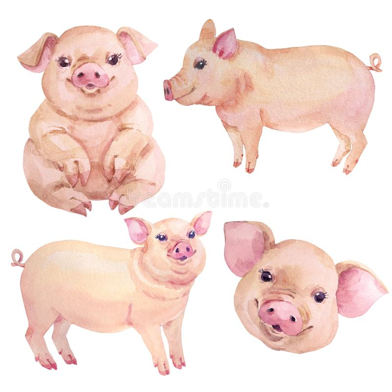 Watercolor cartoon pig christmas new year set royalty free illustration