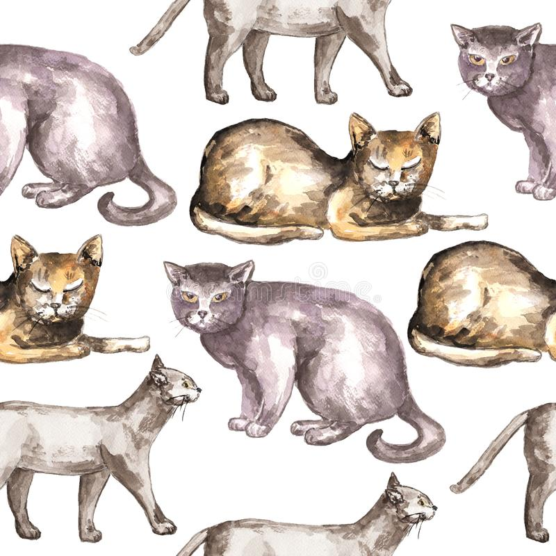 Watercolor cat pattern. Seamless pattern with domestic shorthair cats. Watercolor technique royalty free stock image