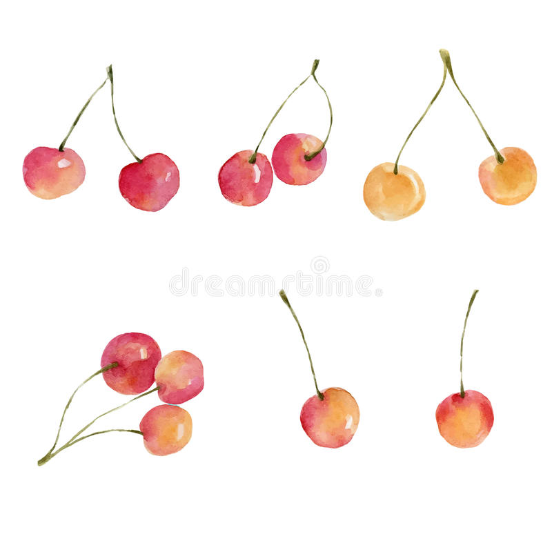 Watercolor cherries isolated on white background. stock illustration