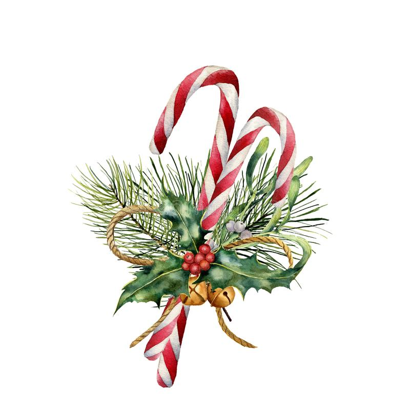 Watercolor Christmas Canes with decor. Hand painted traditional candy with christmas plant: holly, mistletoe, bells. Ribbon and fir branch isolated on white vector illustration