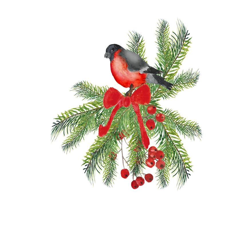 Watercolor. Christmas composition of birds on spruce branches with a bow and red berries. vector illustration