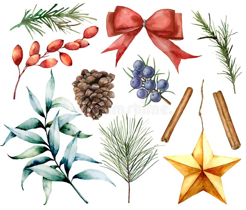 Watercolor Christmas decor set. Hand painted fir branches, eucalyptus leaves, barberry, star, fir cone, cinnamon. Juniper, bow and rosemarin isolated on white stock illustration