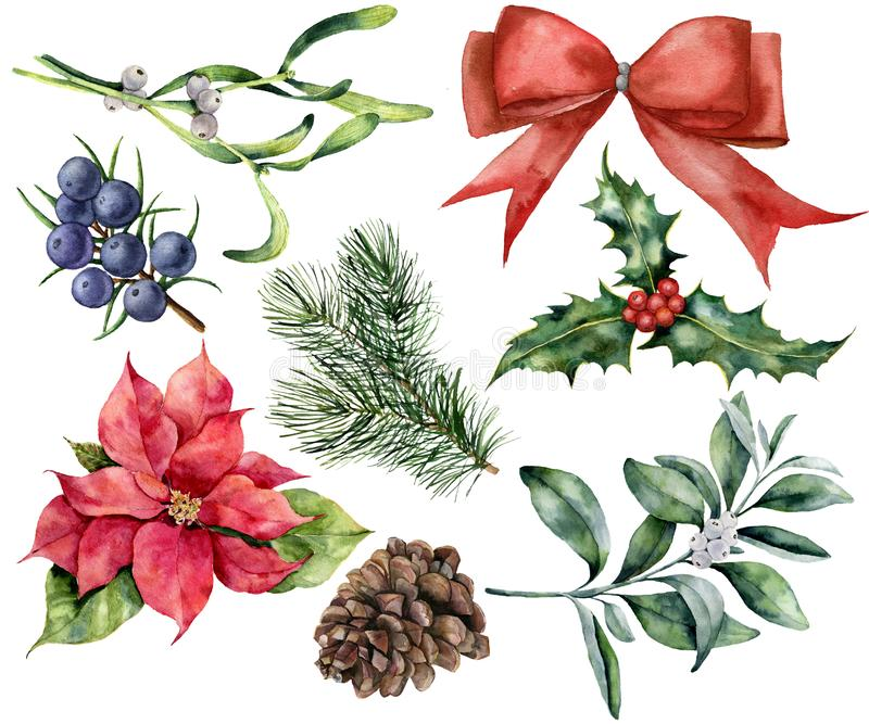 Watercolor Christmas decor set with plant. Hand painted red ribbon, poinsettia, holly, mistletoe, pine cone, juniper and. Snowberry isolated on white background stock illustration