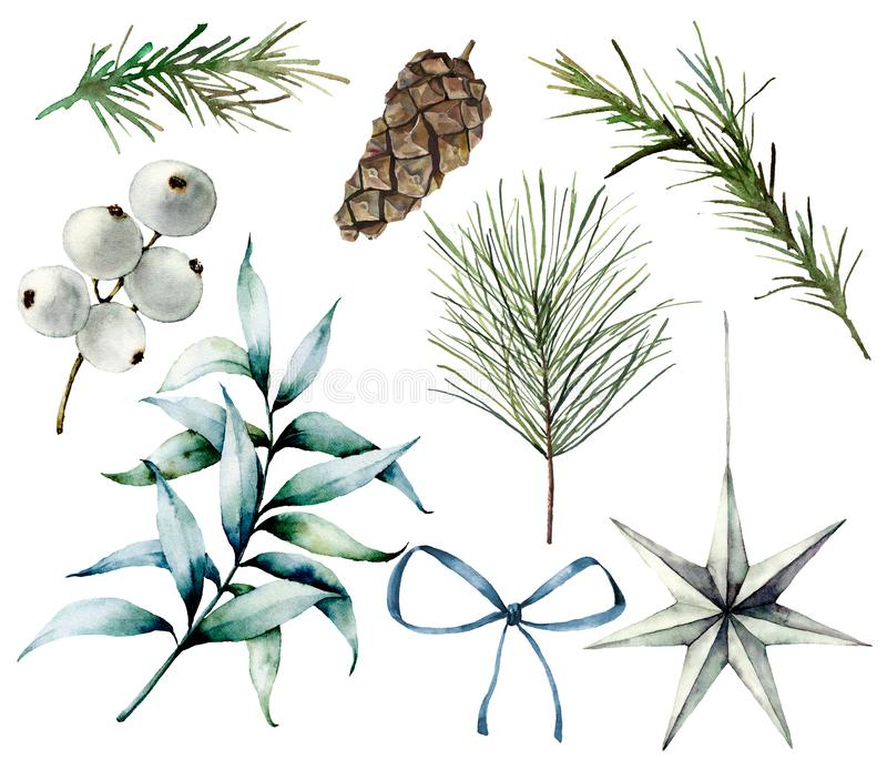 Watercolor Christmas plants and decor. Hand painted fir branches, eucalyptus leaves, white berries, star, fir cone, bow stock illustration