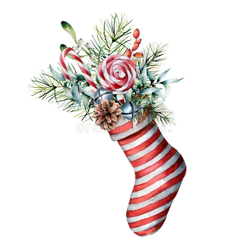Watercolor Christmas sock with winter floral decor and candies. Hand painted holiday symbol with fir branches, cone royalty free illustration