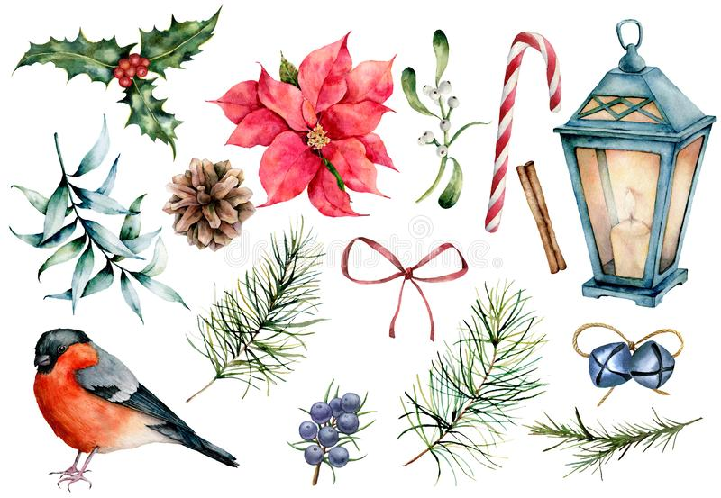 Watercolor Christmas symbols set. Hand painted winter plants, bullfinch bird, decor isolated on white background. Holiday floral and objects illustration for stock illustration