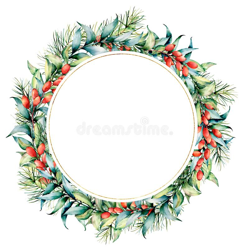 Watercolor Christmas wreath with berries and eucalyptus. Hand painted fir border with barberries, eucalyptus leaves. Isolated on white background. Holiday stock photos