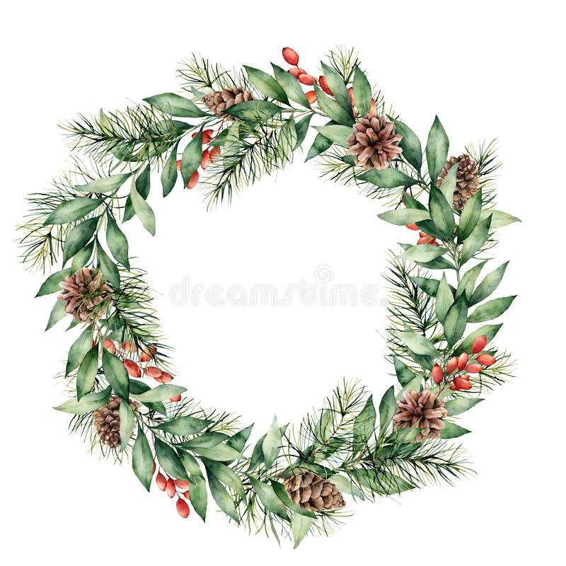 Watercolor Christmas wreath with berries, pine cones and tree branches. Hand painted fir border with eucalyptus leaves. Isolated on white background. Floral stock photo