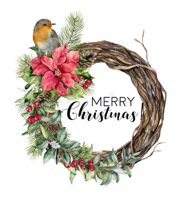 Watercolor Christmas wreath with bird. Hand painted tree frame with robin, poinsettia, holly, snowberry, floral and fir. Branch isolated on white background