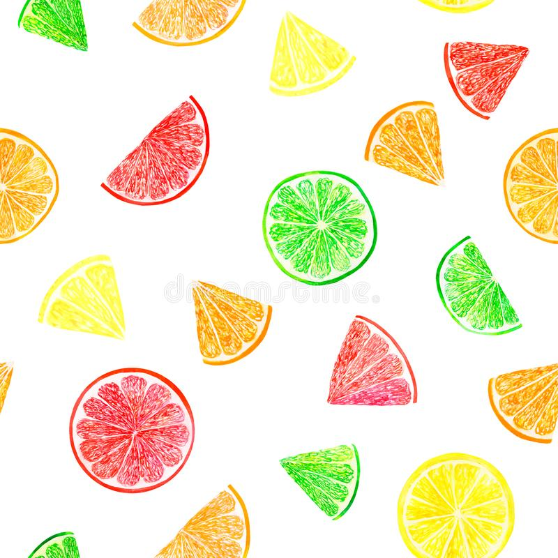 Watercolor citrus pattern with grapefruit, lime, orange, lemon slice. Citrus seamless pattern, botanical natural. Illustration on white background. Hand drawn royalty free stock photo