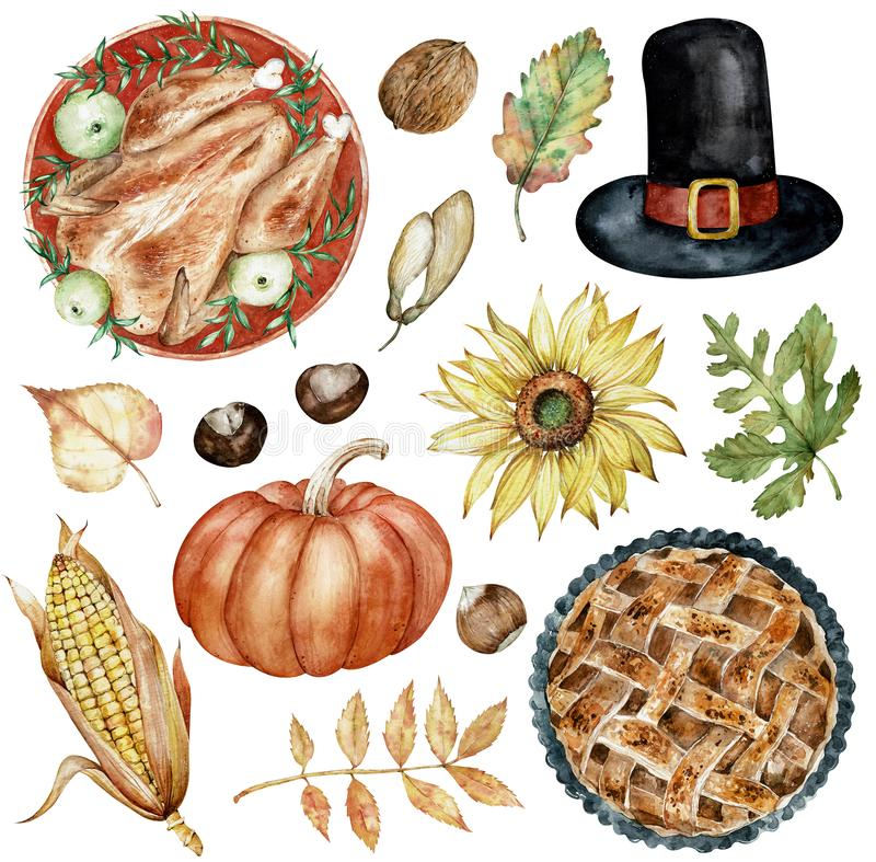 Watercolor clipart of Thanksgiving Day elements baked turkey, hat, nuts, sunflower, pumpkin, autumn leaves. royalty free illustration