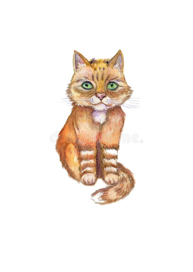 Watercolor close up portrait of cartoon red cat isolated on white background stock illustration