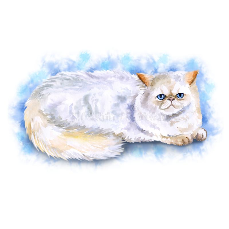 Watercolor close up portrait of popular Exotic longhair Persian cat breed isolated on light blue background. Cream colorpoint. Hand drawn home pet. Greeting stock illustration