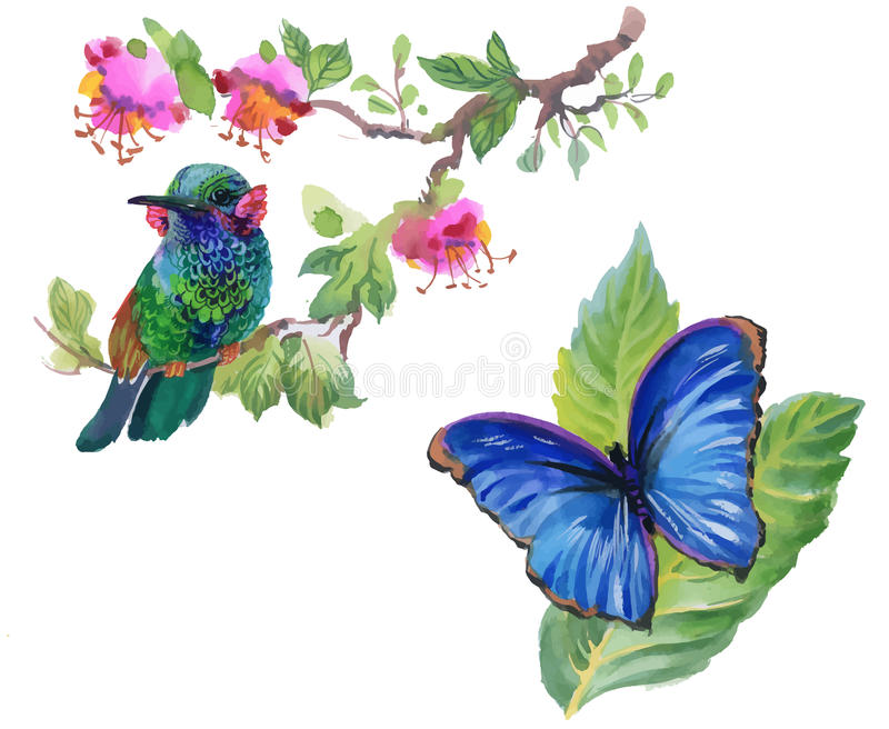 Watercolor colorful Bird and butterfly with leaves and flowers. stock illustration