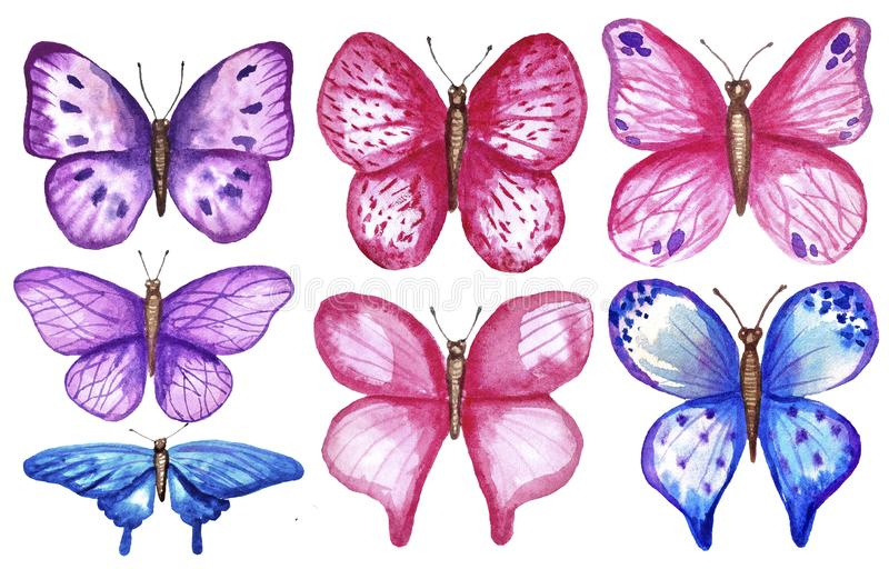 Watercolor colorful butterflies, isolated on white background. blue, pink and violet butterfly spring illustration. vector illustration