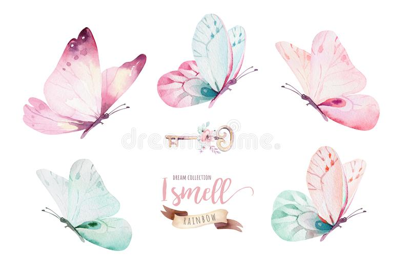 Watercolor colorful butterflies, isolated on white background. blue, yellow, pink and red butterfly illustration. Watercolor colorful butterflies, isolated on vector illustration